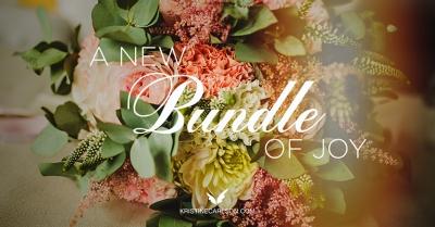 a new bundle of joy blog